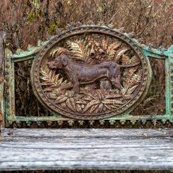 alpaca-farm-and-gardens-13
