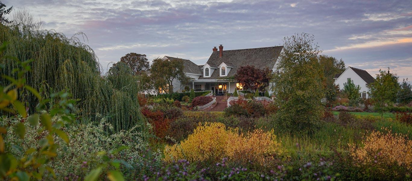 Alpaca-Farm-and-Gardens-home-slider-1