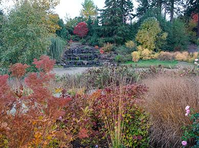 alpaca-farm-and-gardens-autumn-preview